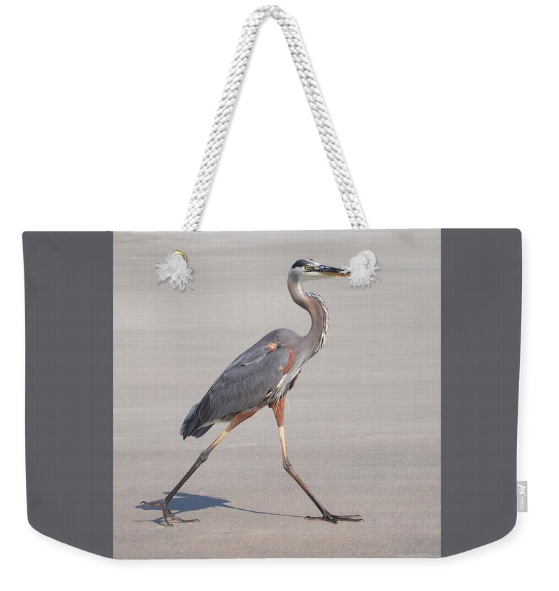 Heron Weekender Tote Bag featuring the photograph Strutting On The Beach by Sally Falkenhagen