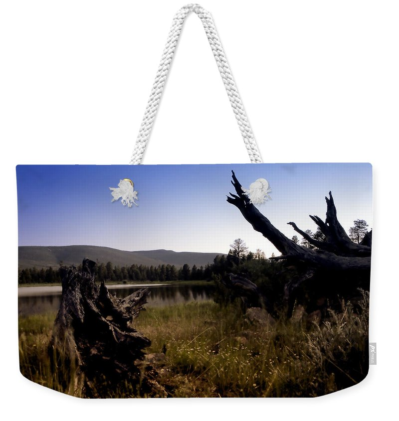 Nature Weekender Tote Bag featuring the photograph Stumped By The Lake by John K Sampson