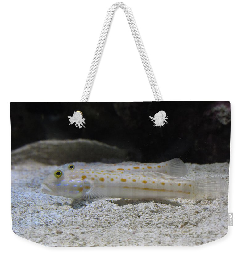 Underwater Weekender Tote Bag featuring the photograph Substrate-sifting Diamond Watchman Goby Pair by Mariecor Agravante