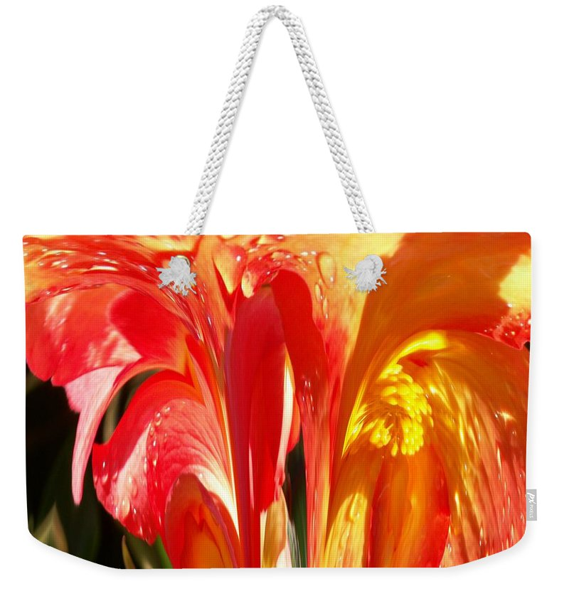 Flowers Weekender Tote Bag featuring the photograph Succulence by Tim Allen