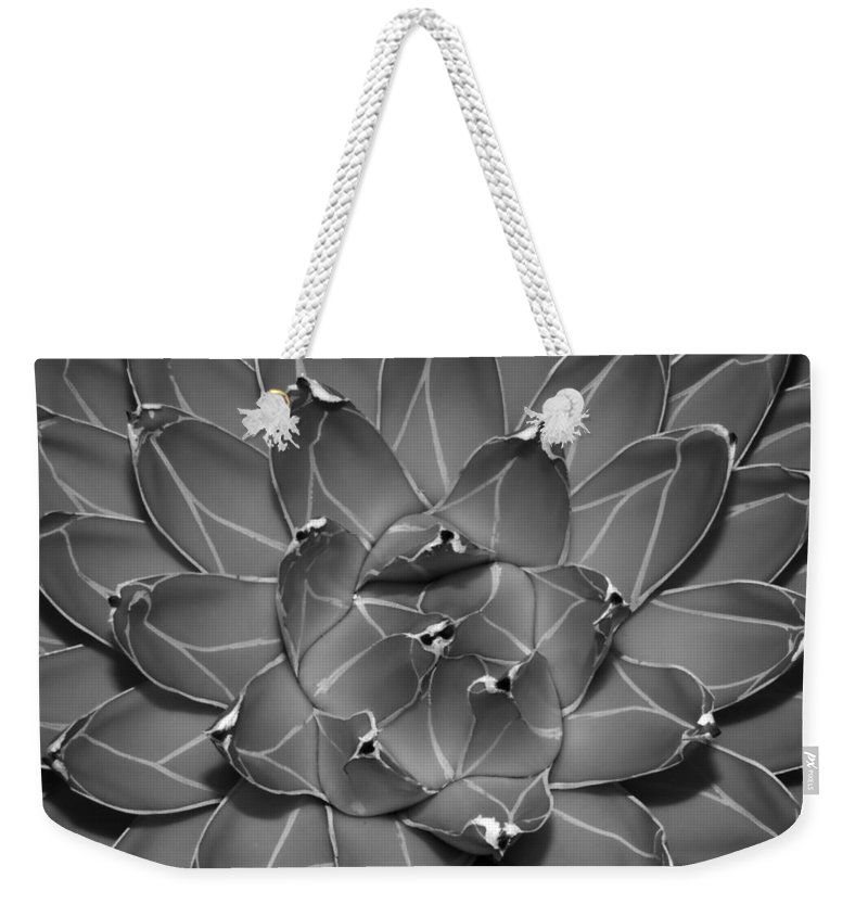 Succulent Weekender Tote Bag featuring the photograph Succulent Ir by Bob Neiman