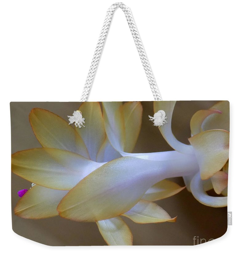 Schlumbergera Orssichiana Weekender Tote Bag featuring the photograph Succulent Season by William Tasker