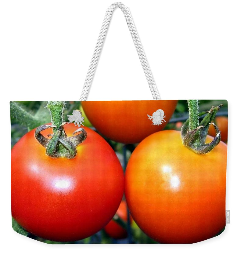 Tomatoes Weekender Tote Bag featuring the photograph Succulent Tomatoes by Will Borden