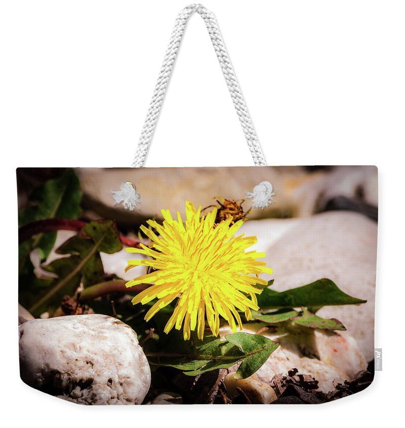 Flowers Weekender Tote Bag featuring the photograph Suckling by Ewelina Pop