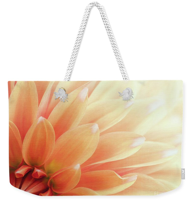 Dahlia Weekender Tote Bag featuring the photograph Sugar N Spice by Beve Brown-Clark Photography