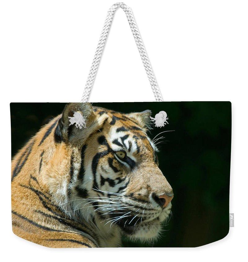 Fauna Weekender Tote Bags