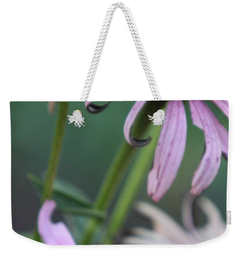 Echinacea Weekender Tote Bag featuring the photograph Summer by Amanda Barcon