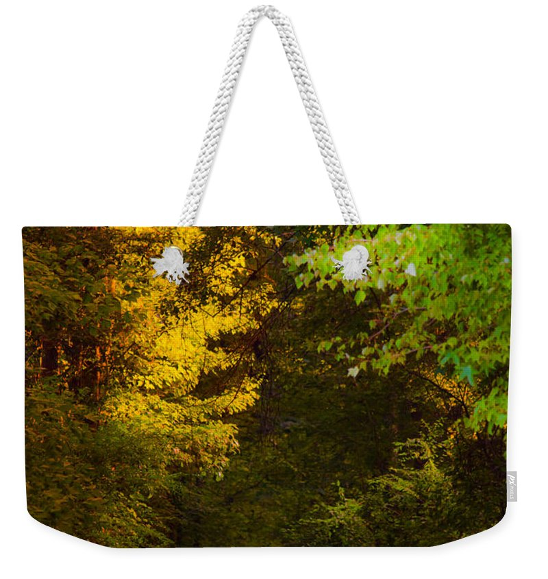 Path Weekender Tote Bag featuring the photograph Summer And Fall Collide by Parker Cunningham