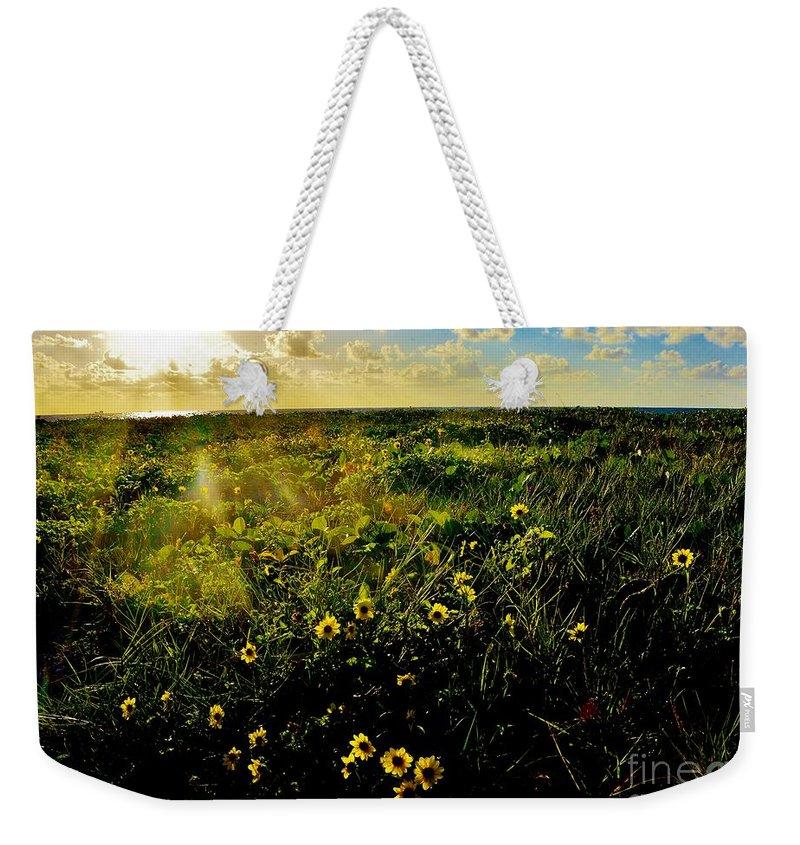 Beach Daisy Weekender Tote Bag featuring the photograph Summer Beach Daisy by Lisa Renee Ludlum