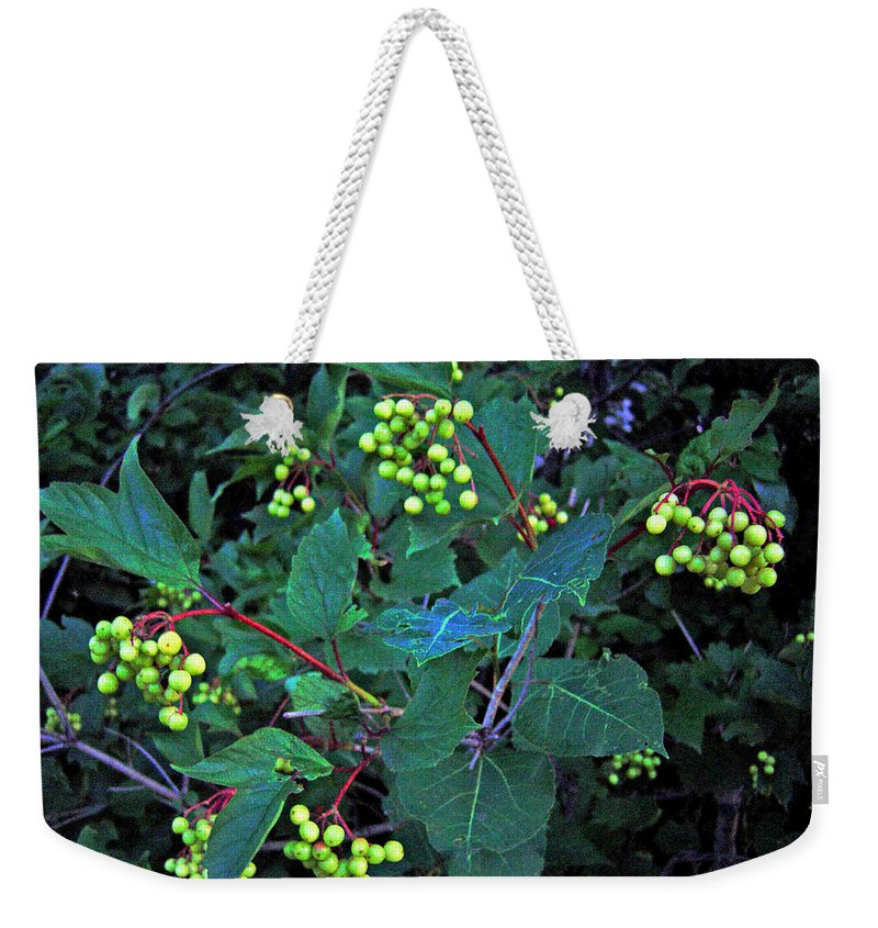Hi Bush Cranberries And Leaves Weekender Tote Bag featuring the photograph Summer Berries by Joanne Smoley
