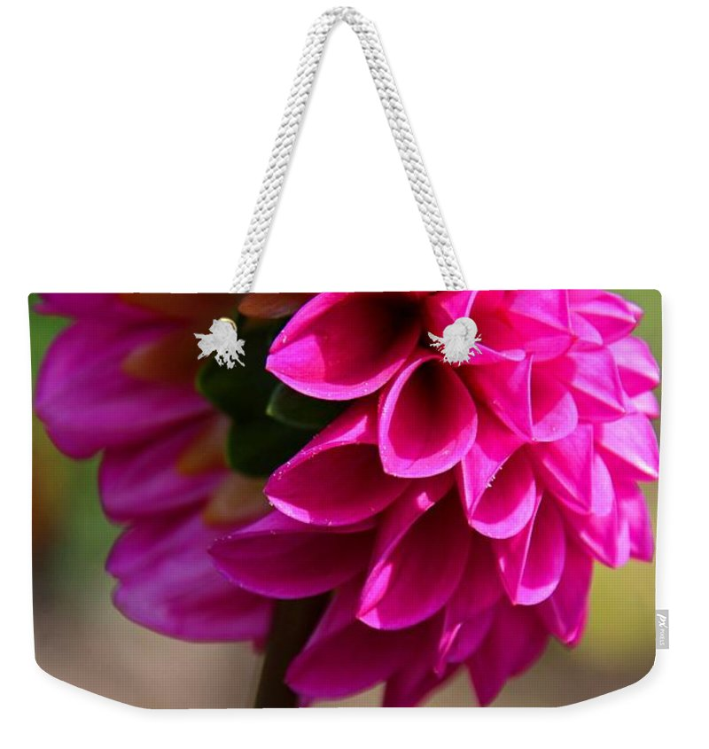 Dahlia Weekender Tote Bag featuring the photograph Summer Flambe by Michiale Schneider