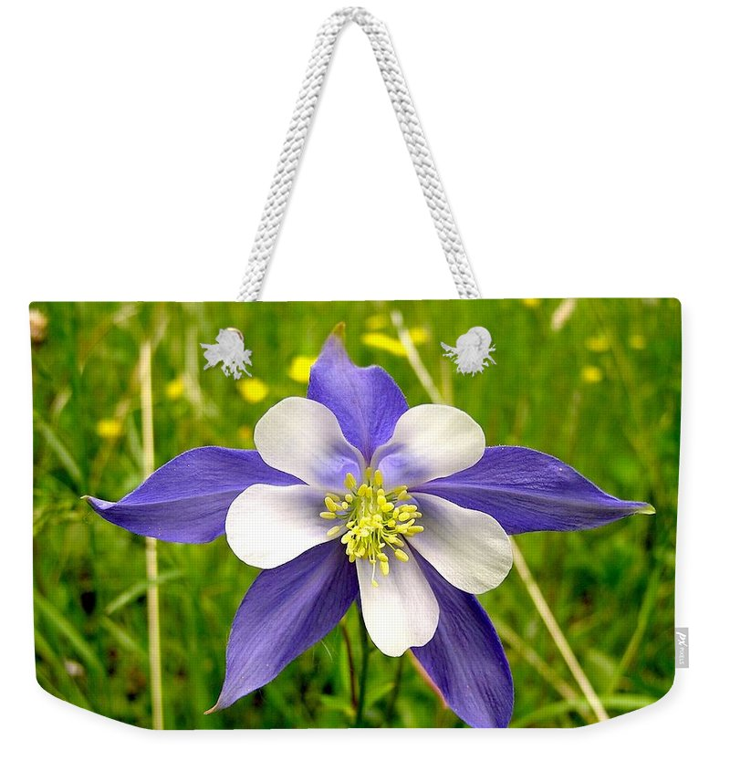 Plant Weekender Tote Bag featuring the photograph Summer In The Rockies by Carol Milisen