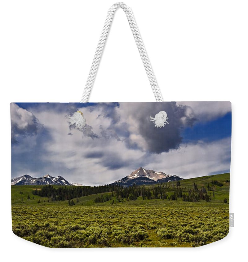 Nature Weekender Tote Bag featuring the photograph Summer by John K Sampson