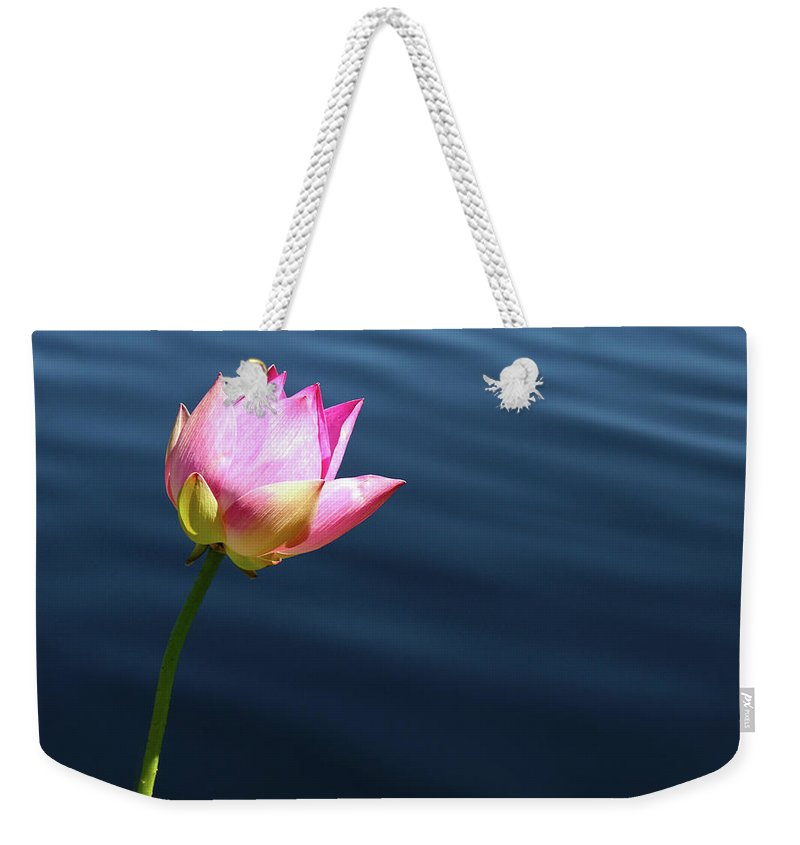 Pink Weekender Tote Bag featuring the photograph Summer Lily by Marie Leslie