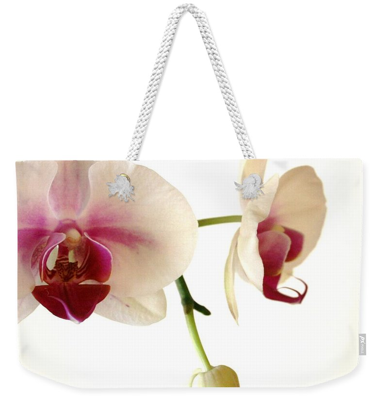 White Weekender Tote Bag featuring the photograph Summer Orchids by Marna Edwards Flavell