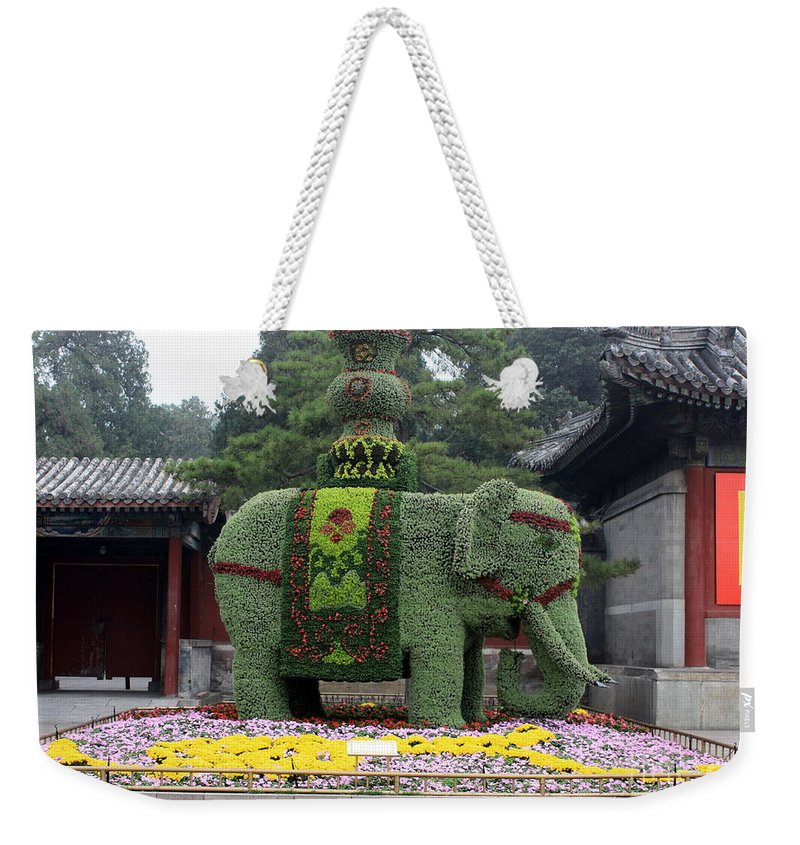 Summer Palace Weekender Tote Bag featuring the photograph Summer Palace Elephant by Carol Groenen