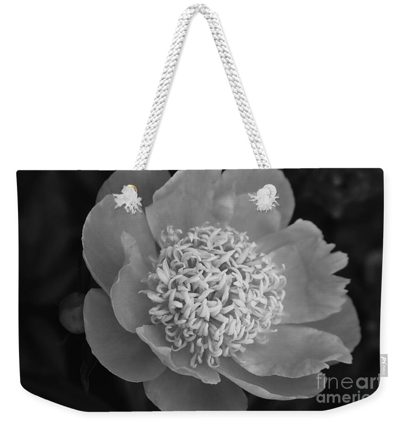 Peony Weekender Tote Bag featuring the photograph Summer Peony by Kathy McClure