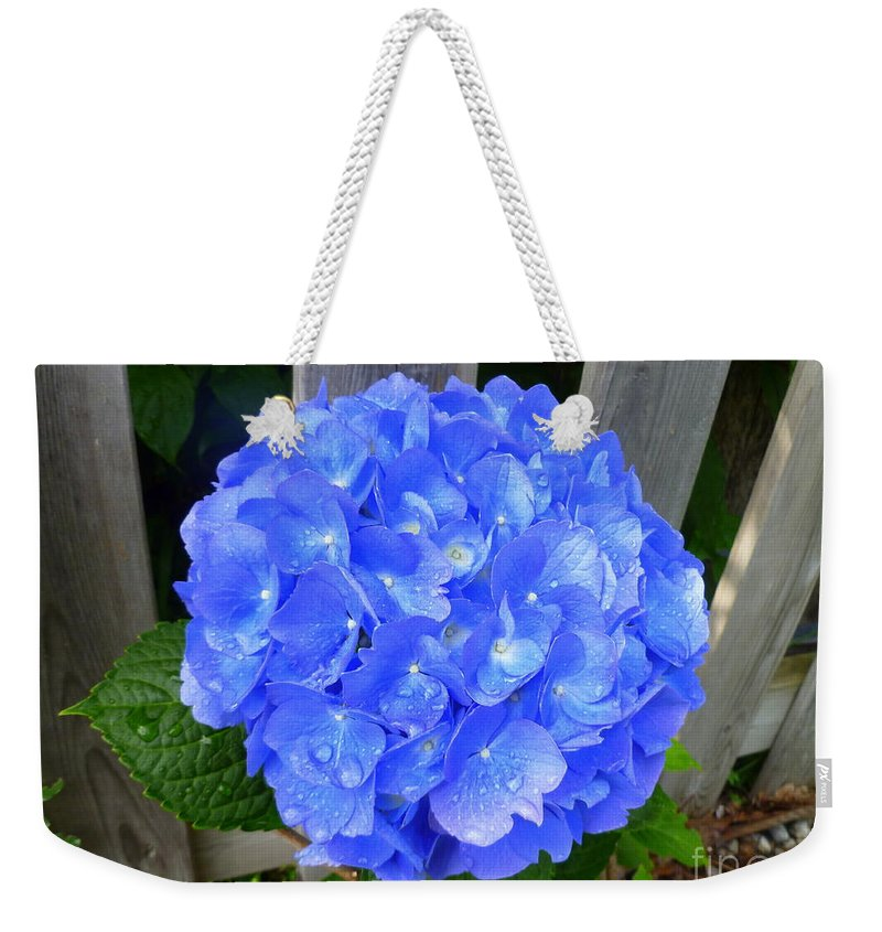 Flora Weekender Tote Bag featuring the photograph Summer Rain Azure by Lingfai Leung
