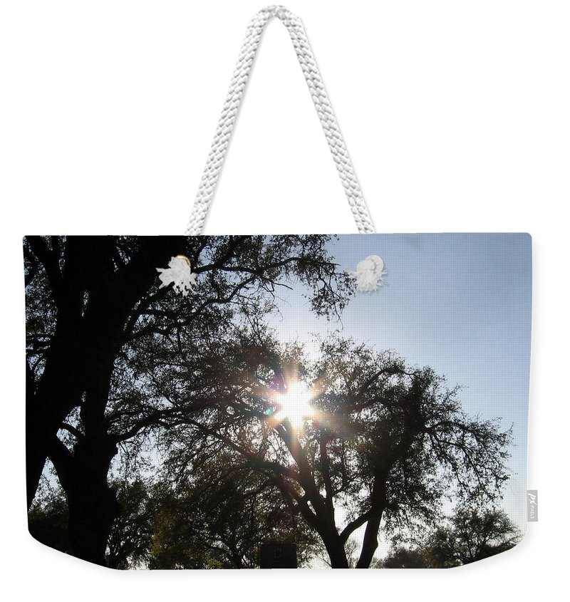 Tree Weekender Tote Bag featuring the photograph Sun Burst by Amy Hosp
