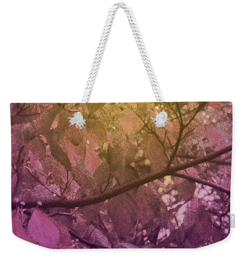 Tree Weekender Tote Bag featuring the photograph Sun Filter by Ian MacDonald