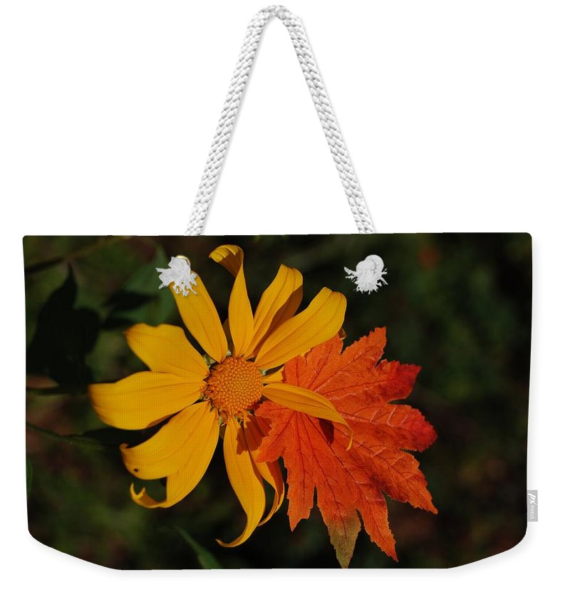 Pop Art Weekender Tote Bag featuring the photograph Sun Flower And Leaf by Rob Hans