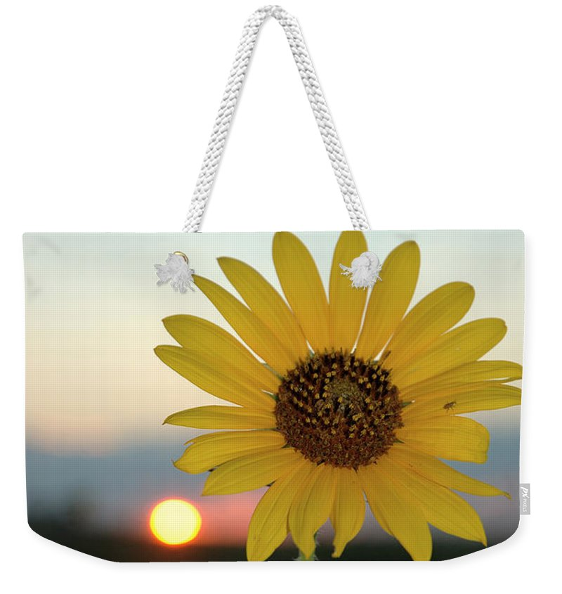 Sunset Weekender Tote Bag featuring the photograph Sun Flower At Sunset by Jerry McElroy