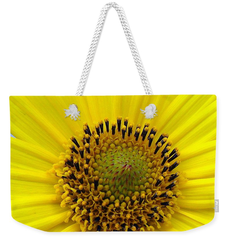 Weekender Tote Bag featuring the photograph Sun Flower by Luciana Seymour