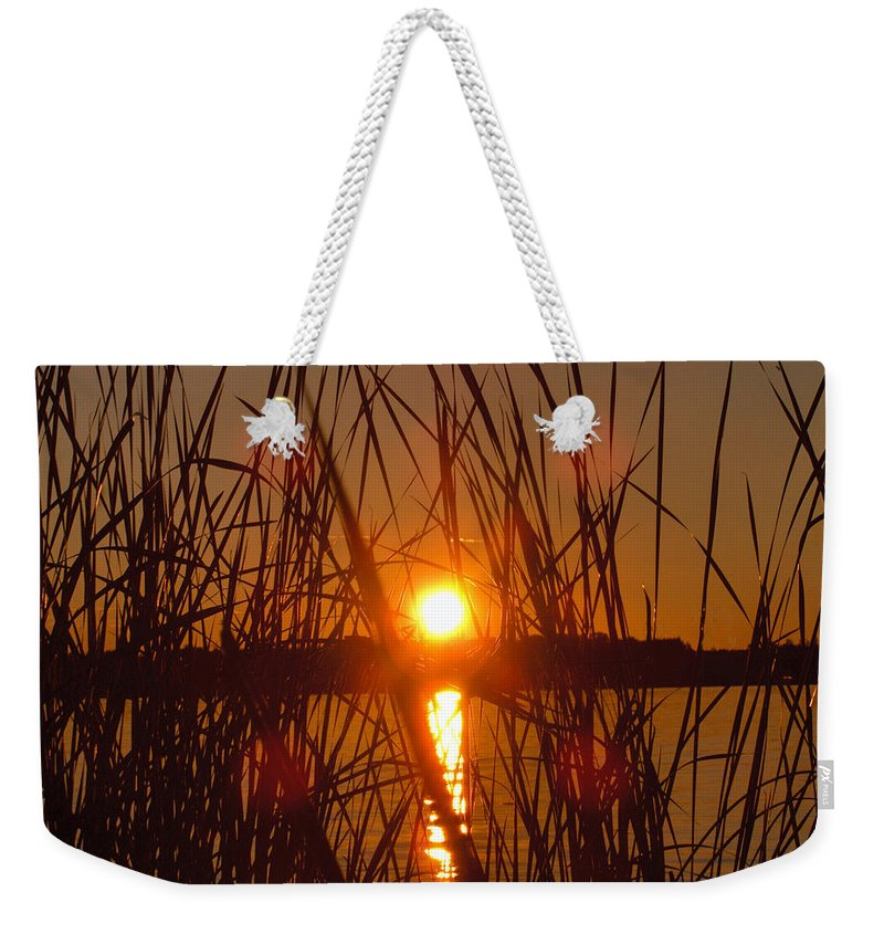 Reeds Lake Water Sunset Sunshine Nature Weekender Tote Bag featuring the photograph Sun In Reeds by Andrea Lawrence