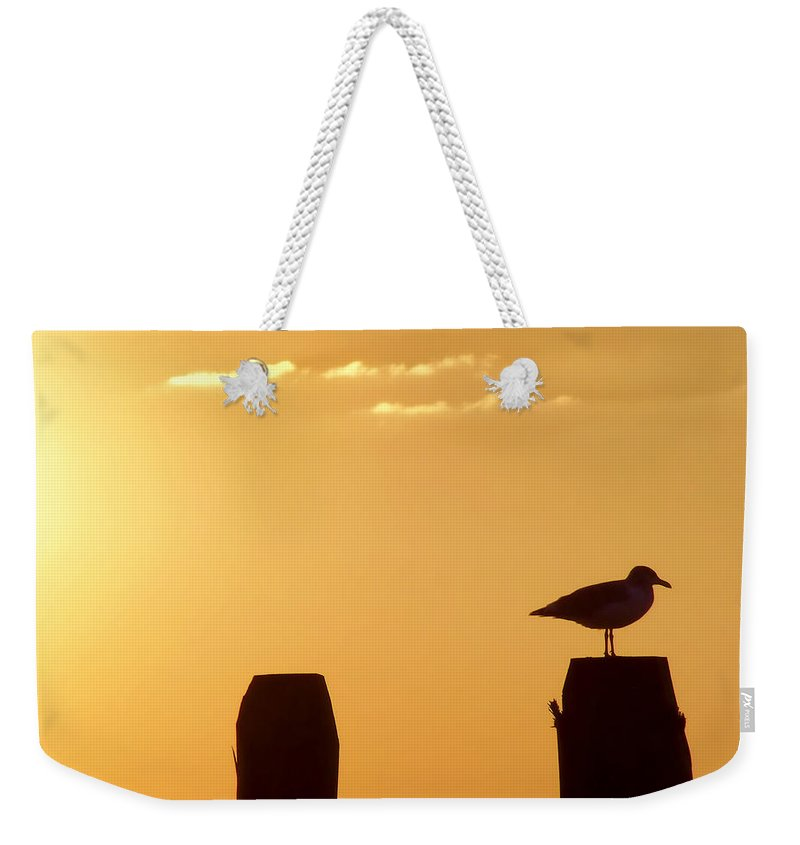 Beach Weekender Tote Bag featuring the photograph Sun Is Rising by JAMART Photography