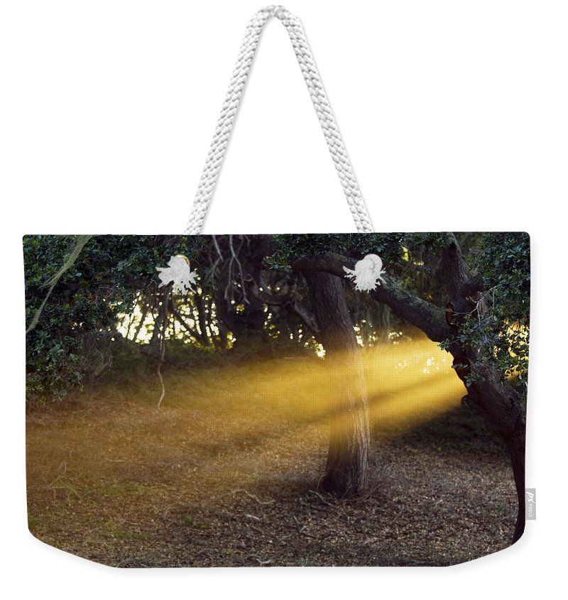 Landscape Weekender Tote Bag featuring the photograph Sun Rays 2 by Jill Reger