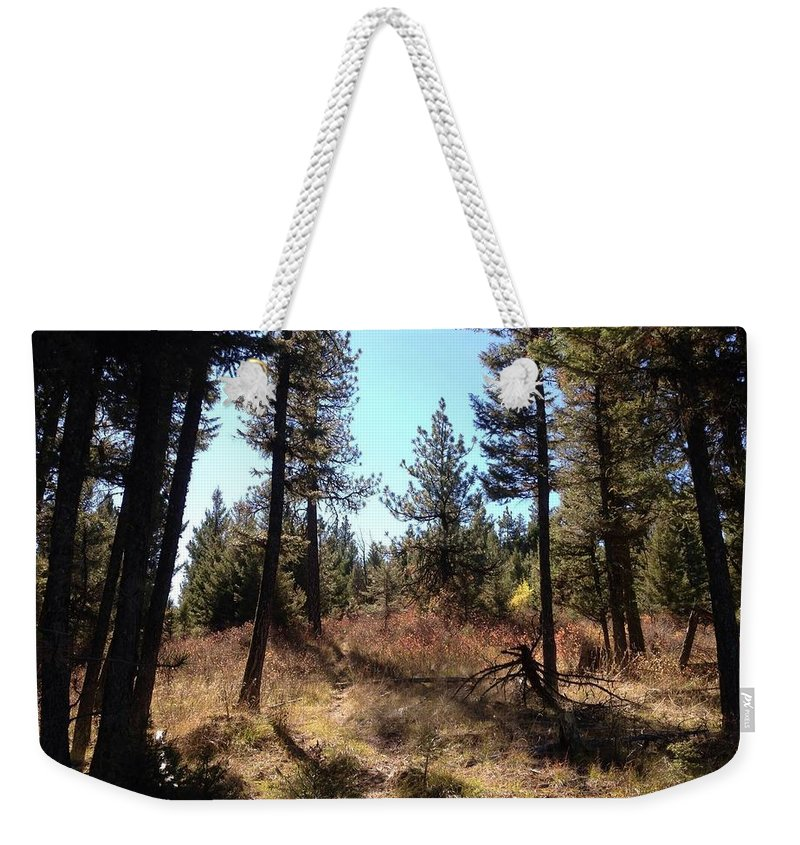 Weekender Tote Bag featuring the photograph Sun Shadows by Dan Hassett