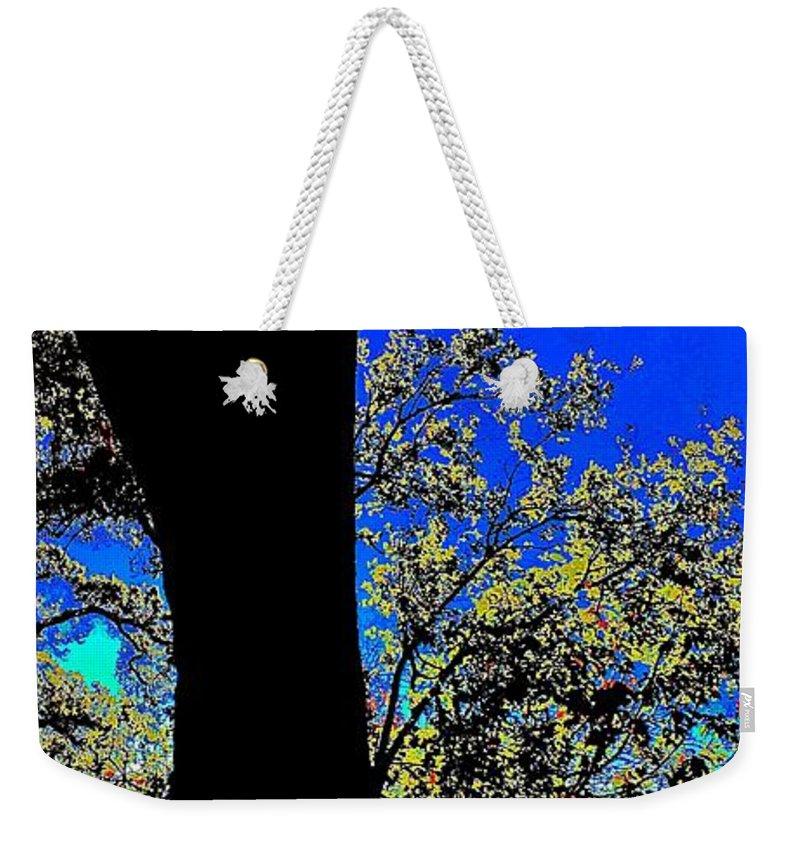 Sun Through Oak V3 Weekender Tote Bag featuring the photograph Sun Through Oak V3 by Scott L Holtslander