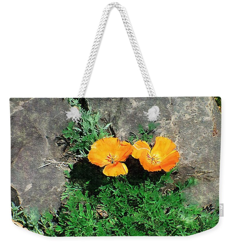 Cliff Weekender Tote Bag featuring the painting Sunbathers by RC DeWinter