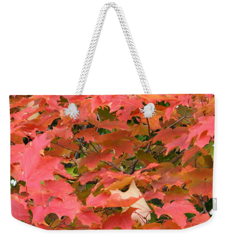 Leaves Weekender Tote Bag featuring the photograph Sunburst by Kelly Mezzapelle