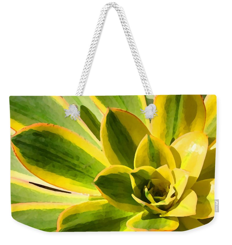 Landscape Weekender Tote Bag featuring the photograph Sunburst Succulent Close-up 2 by Amy Vangsgard