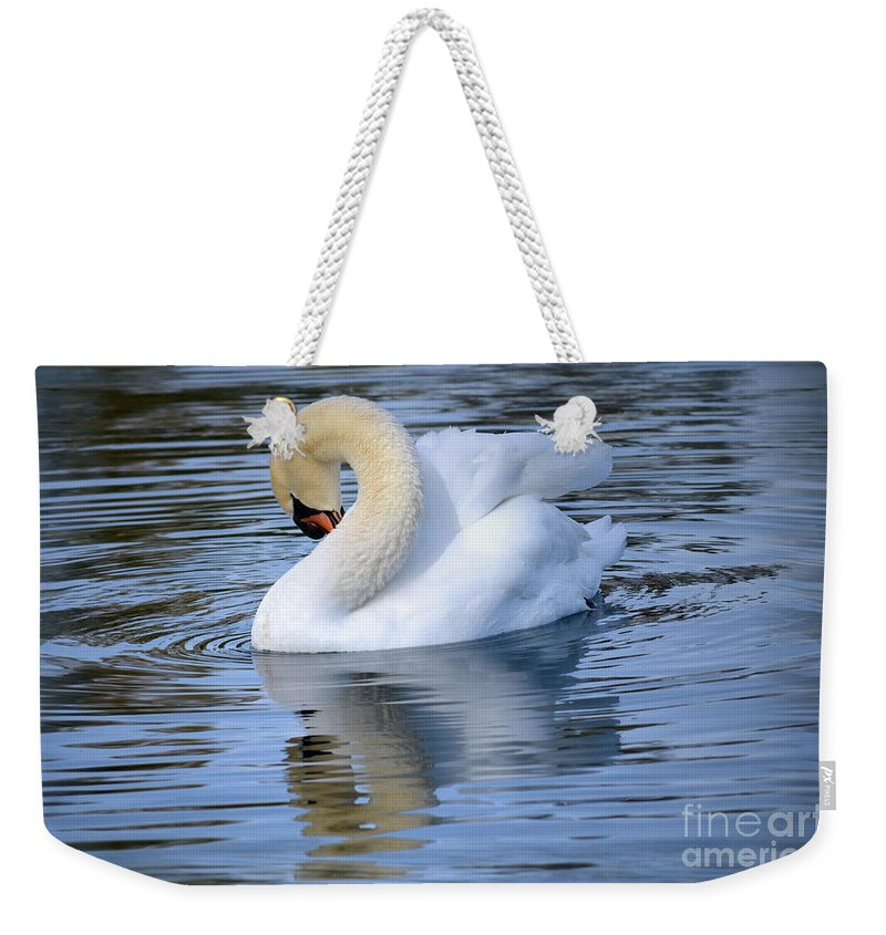 Trumpeter Swan Weekender Tote Bag featuring the photograph Sunday At The Lake by Deb Halloran