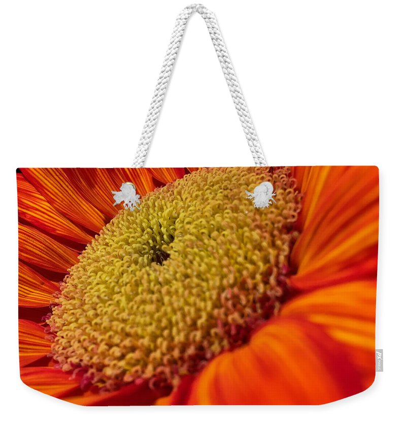 Sunflower Weekender Tote Bag featuring the photograph Sunflower Fire 1 by Nathan Little