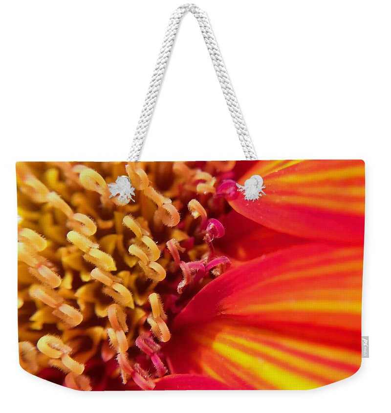 Sunflower Weekender Tote Bag featuring the photograph Sunflower Fire 4 by Nathan Little
