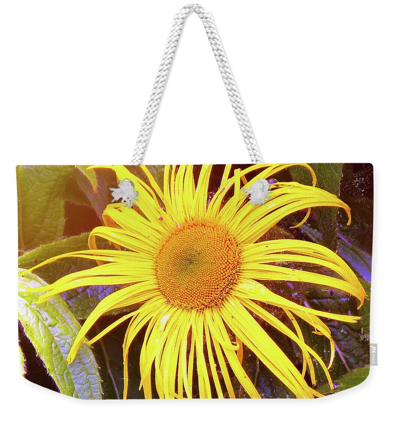 Sunflower Weekender Tote Bag featuring the photograph Sunflower by Lynn Bolt
