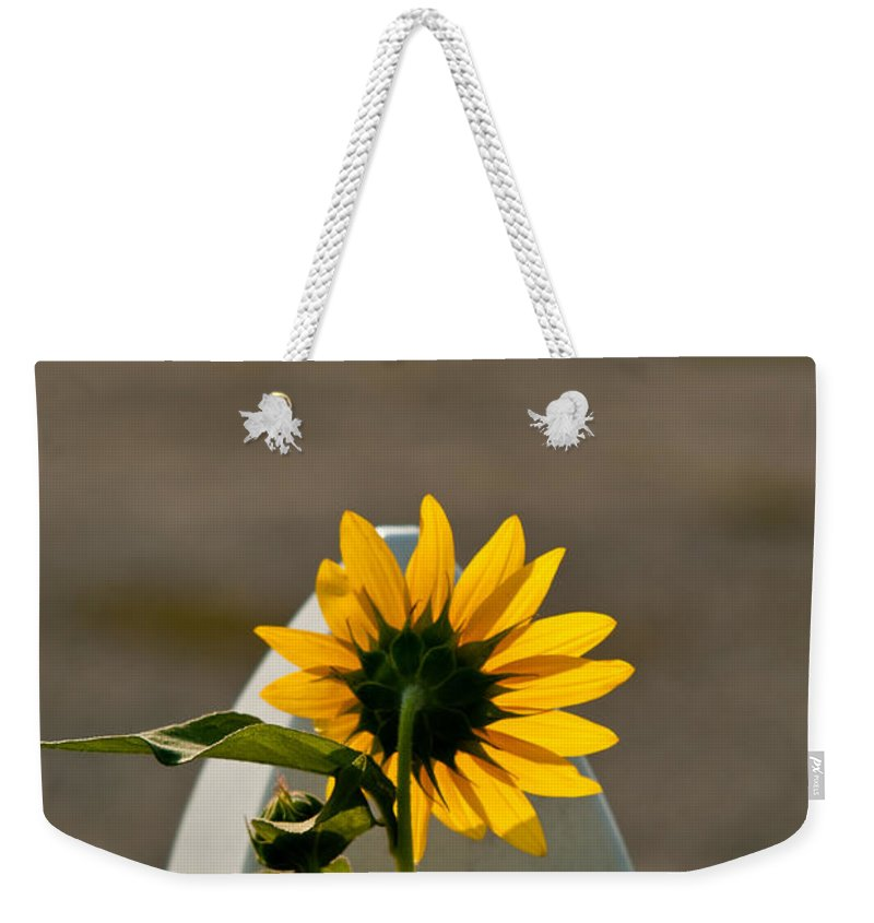 Sun Weekender Tote Bag featuring the photograph Sunflower Morning by Douglas Barnett