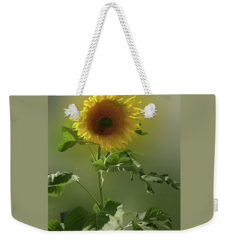 Sunflower Weekender Tote Bag featuring the photograph sunflower No. 10 by Susan Crowell