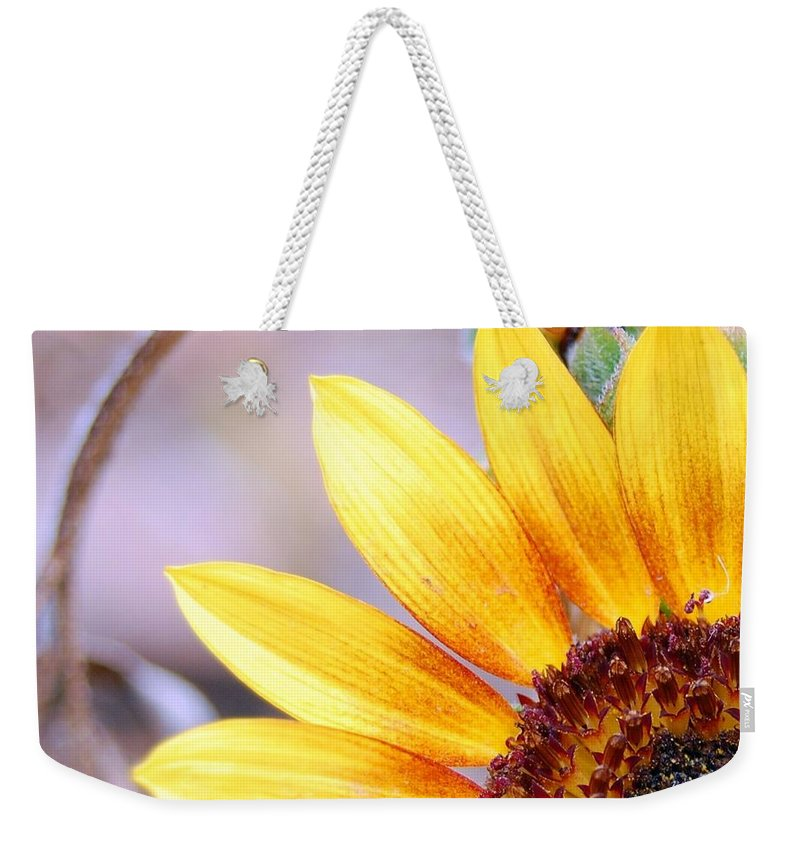 Sunflower Weekender Tote Bag featuring the photograph Sunflower Perspective by Amy Fose