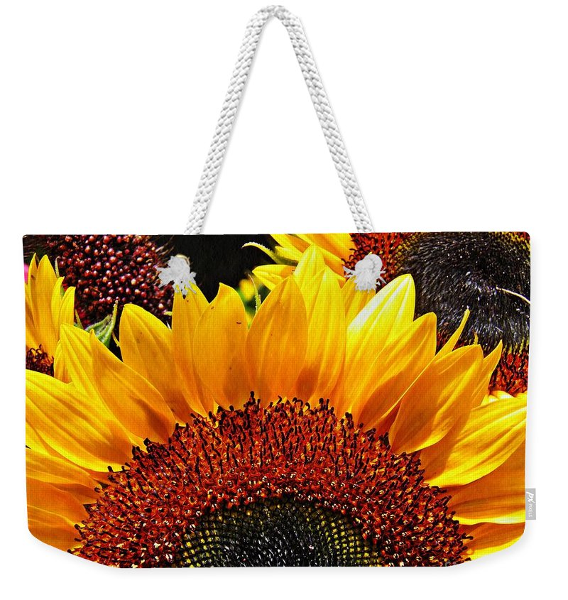 Sunflower Weekender Tote Bag featuring the photograph Sunflower Rise by Sarah Loft
