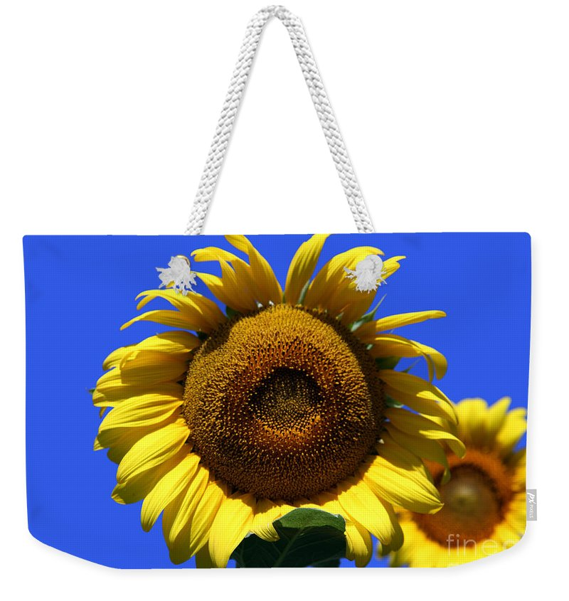 Sunflowers Weekender Tote Bag featuring the photograph Sunflower Series 09 by Amanda Barcon