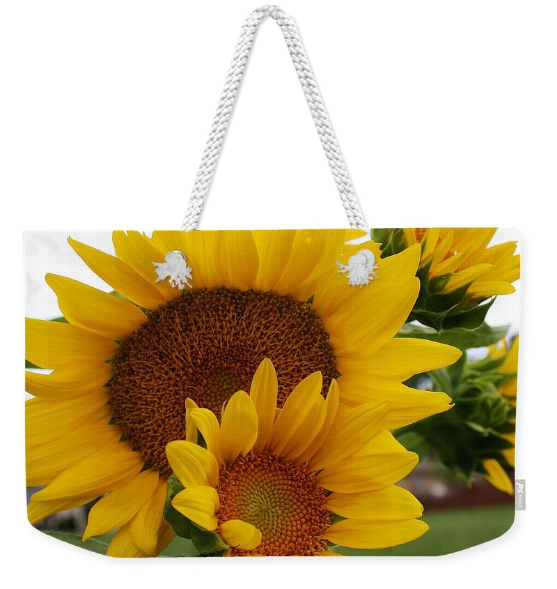 Flora Weekender Tote Bag featuring the photograph Sunflower Show by Bruce Bley