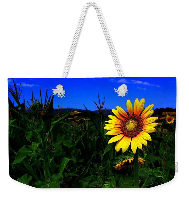 Flower Weekender Tote Bag featuring the photograph Sunflower by Silvia Ganora