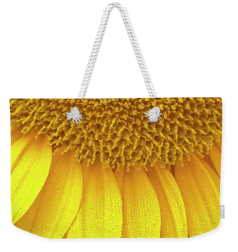 Sunflower Weekender Tote Bag featuring the photograph Sunflower Up Close by Wim Lanclus