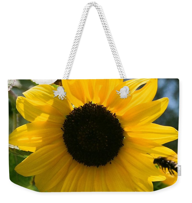 Flower Weekender Tote Bag featuring the photograph Sunflower With Bee by Dean Triolo