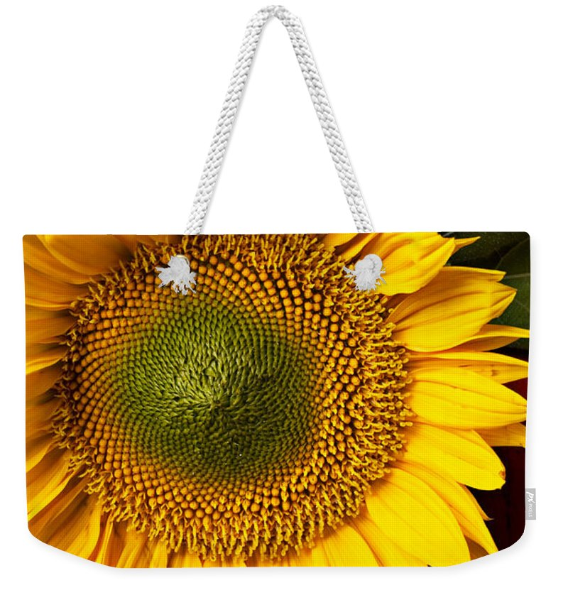 Sunflower Weekender Tote Bag featuring the photograph Sunflower With Old Key by Garry Gay