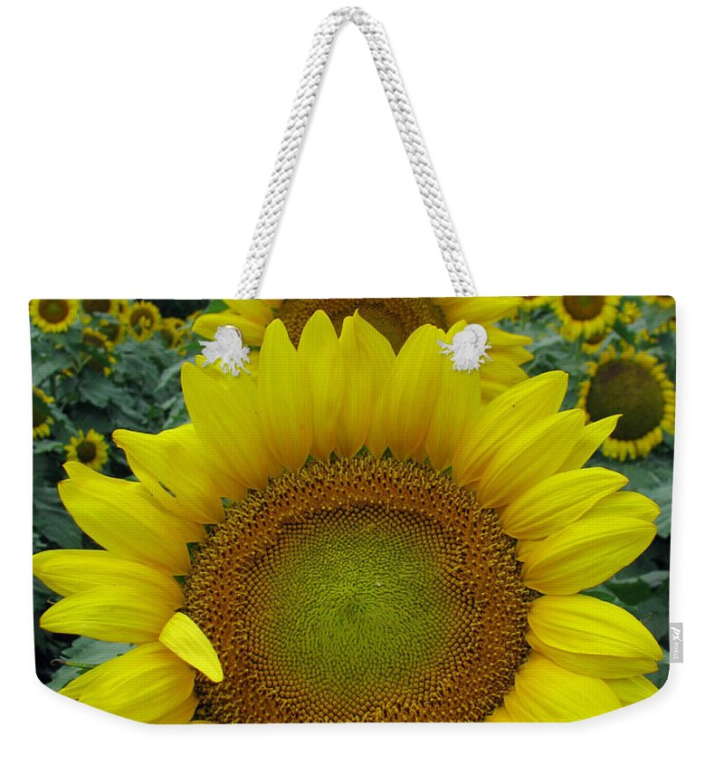 Sunflowers Weekender Tote Bag featuring the photograph Sunflowers by Amanda Barcon